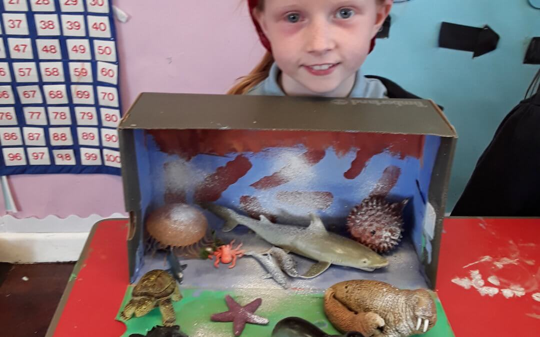 Year 2 shoe box habitats