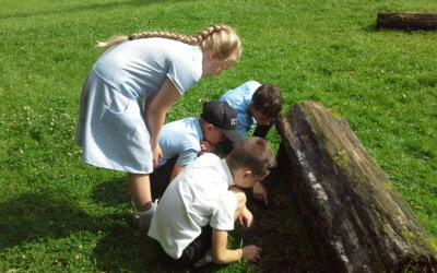 Year 4 Reddish Vale Country Park trip