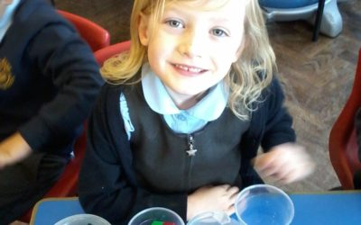 Year 1 – Maths and Science